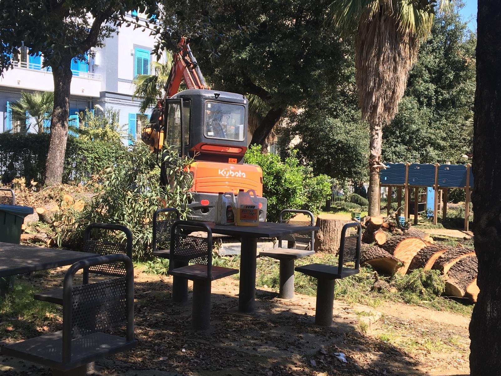 Tra sette giorni riapre al Vomero il Parco Mascagna, polemiche per otto alberi abbattuti