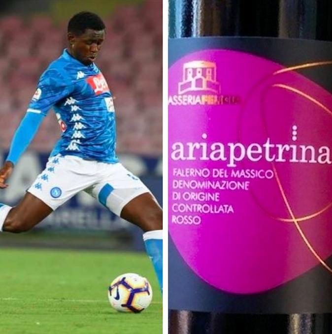 Diawara e l'Ariapetrina il vino gioviale e sbarazzino in terra di Falerno