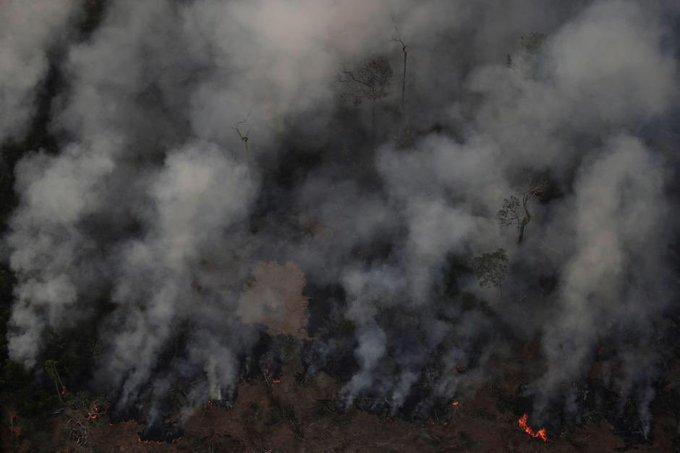 Il Napoli lancia su Twitter un appello per l'Amazzonia che brucia